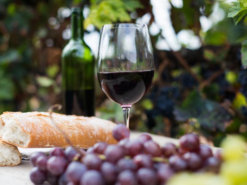 ORSH_La_Rioja (15)_800x600