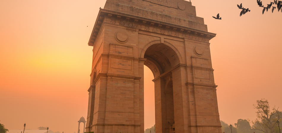 ORSH_birds fly over india gate, new delhi, india_950x450