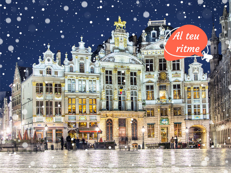 800x600 CAT ORSH_Grand Place in Brussels on a snowy winter night, Belgium