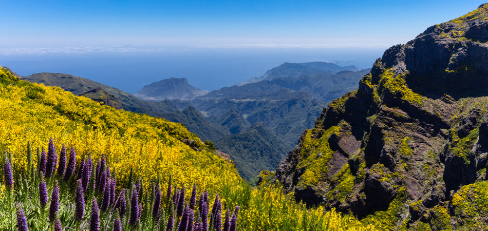 950x450 ORSH_A view from Pico do Areeiro path to P