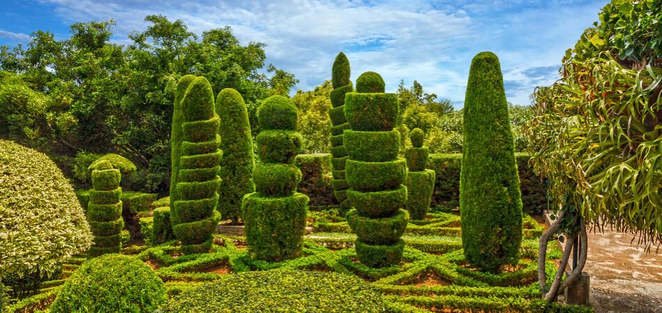 950x450 ORSH_Botanical garden Monte, Funchal, Made