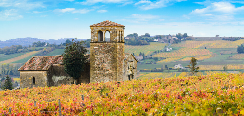 950x450 ORSH_Landscape and colors of Beaujolais la