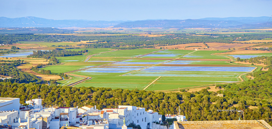 A view of the La Janda county with the Marshes of Barbate river. View from the La Corredera walkway viewpoint. Vejer de la Frontera downtown. Vejer de la Frontera, Cadiz province, Andalusia, Spain.